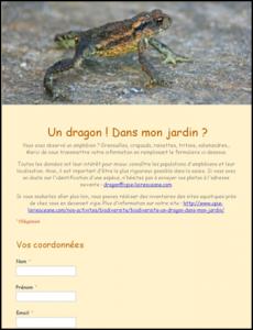 Formulaire un dragon dans mon jardin
