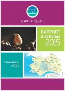 20170505_CPIE_LO_Rapport_activité_2015_image