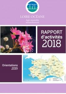 Rapport_activité_recto