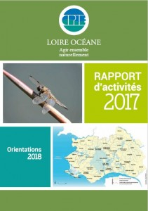 Rapport_activité_2017_page_recto